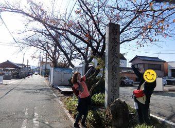 フォトロゲイニング松阪2018