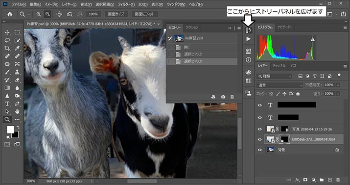 Photoshop初心者必見!作業効率が格段に向上するショートカットキー