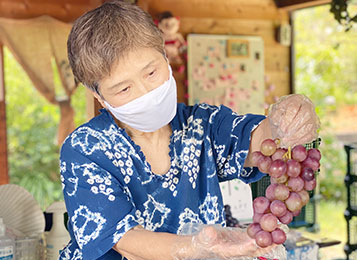 松阪で人気の松浦葡萄園!産地直送のぶどうを気軽にお取り寄せ